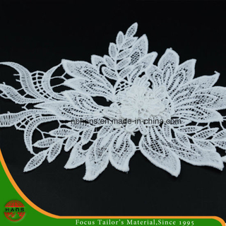 2017new Design Embroidery Lace on Organza (HJKL-1705)